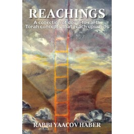 Reachings - By Rabbi Yaacov Haber