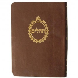 Tehillim With Mincha Maariv