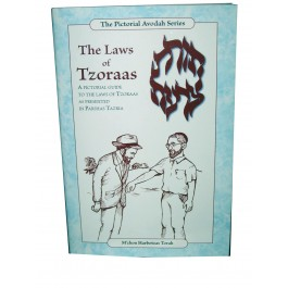 The Laws Of Tzoraas