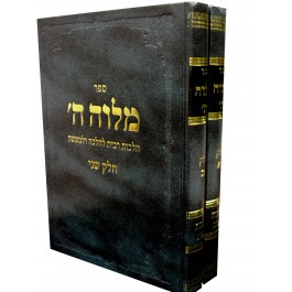 "Melaveh Hashem 2. Vol. Halachot Ribbit by Rabbi Moshe Levi z""l"