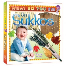 What Do You See on Sukkos?