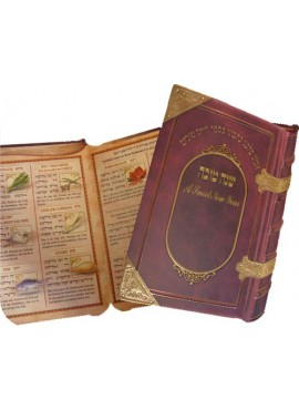 Shana Tova 2 Fold Book Style
