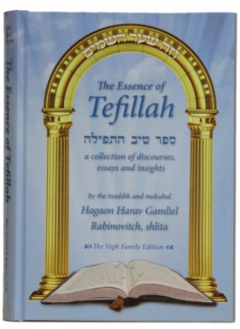 The Essence of Tefillah
