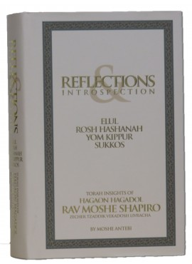 Reflections & Introspection - Torah Insights of Rav Moshe Shapiro - High Holidays