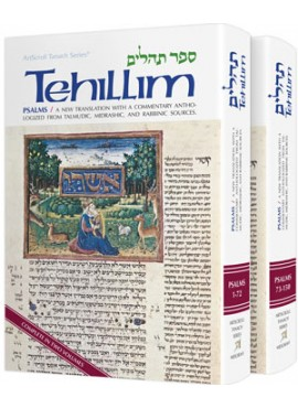 Tehillim / Psalms Commentary