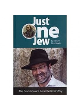 Just One Jew - by Moishe Mendlowitz