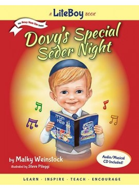 Dovy's Special Seder Night