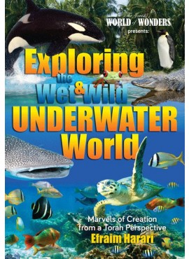 Exploring the Wet and Wild Underwater World