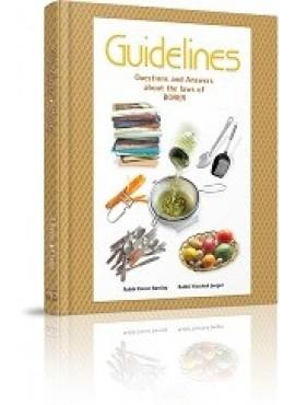 Guidelines Shabbes - Borer