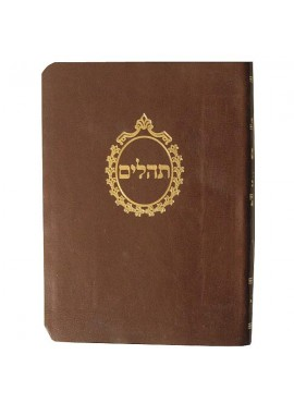 Tehillim With Mincha Maariv