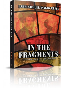 In the Fragments - Reflections of a Child of Survivors