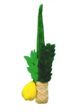 Soft Lulav and Etrog for Kids