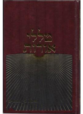 Talelei Oros - Eicha - Bein Hamtzarim