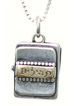 Gold/Silver Necklace - Tehillim Pendant