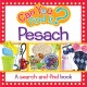 Can You Find It - Pesach Board Book